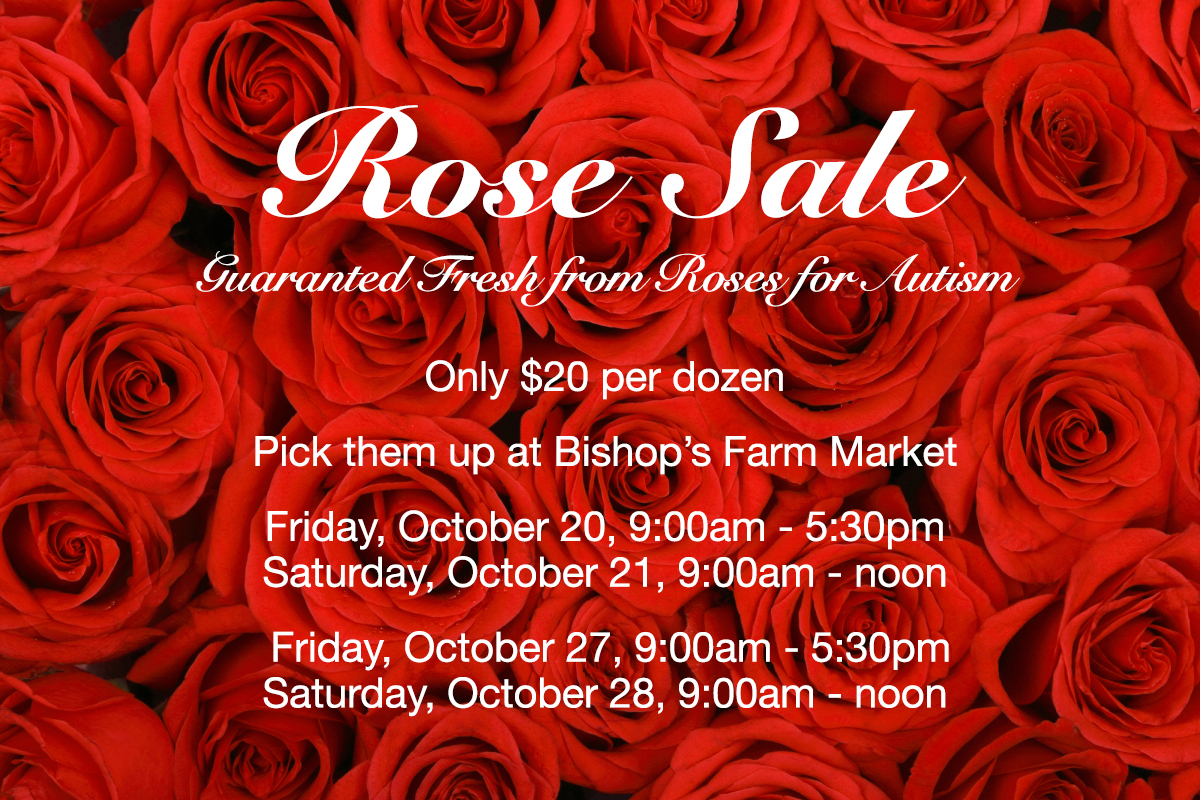 Beautiful roses for the Annual Rotary Rose Sale